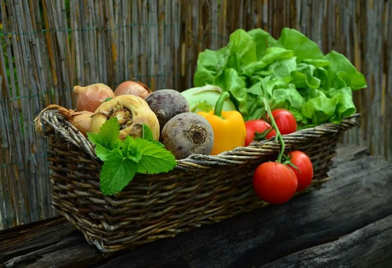 accounting news vegetables